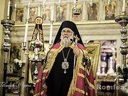 Митрополит Керкирский Нектарий призвал отложить рассмотрение украинского церковного вопроса