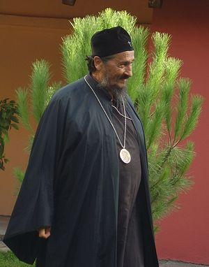 Епископ Афанасий (Евтич)
