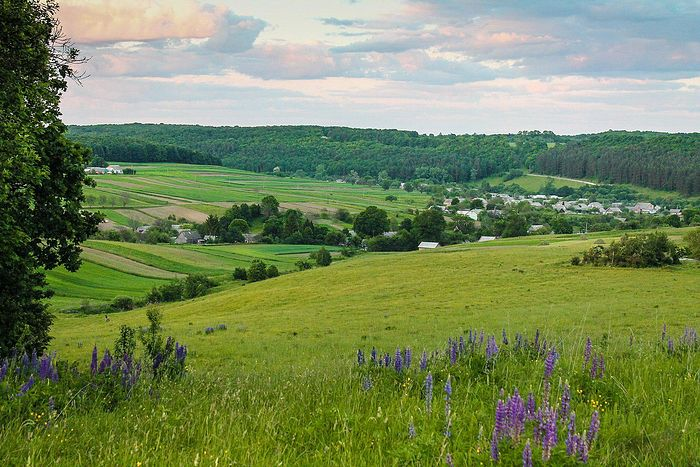 Rivne region of Volhynia Photo: Wikidata