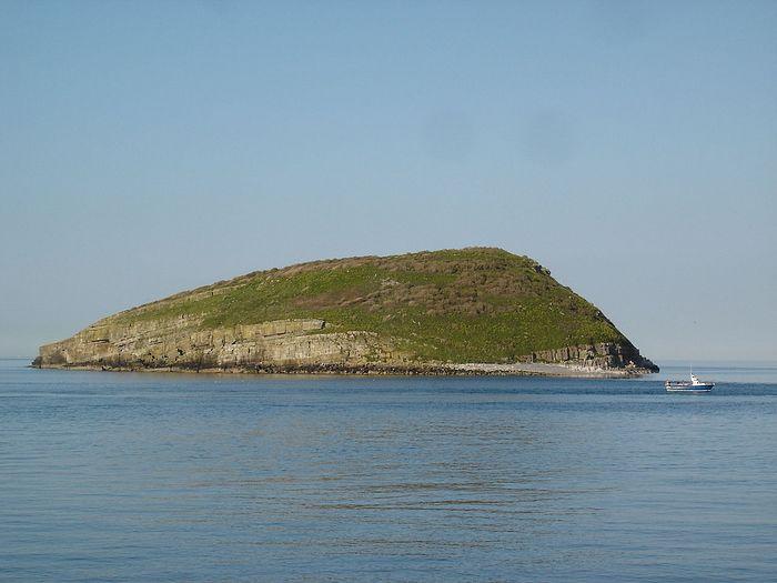Вид на остров Паффин с пляжа Пенмон-Поинт