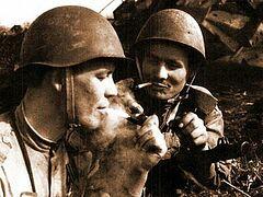 «Привет» от немецкого снайпера и другие действенные способы бросить курить