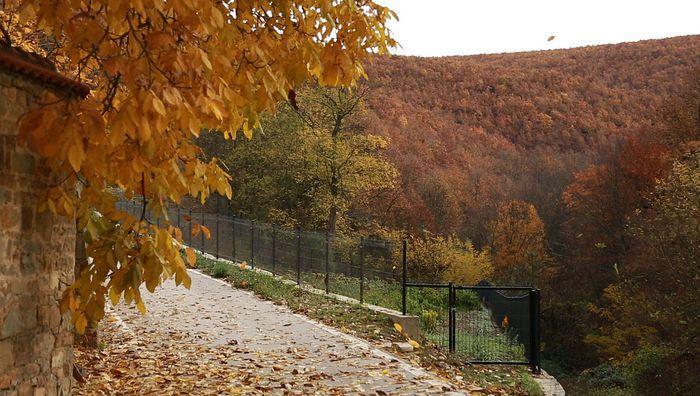 Смештен у густој шуми, Манастир Девич опкољен је албанским насељима. Чува га Полиција Косова. Фото: SPUTNIK / ДЕЈАН СИМИЋ