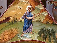 Евангелие о Господе Сеятеле