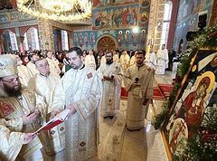 Mother of God declared patron of northwestern Romanian town (+ VIDEO)