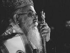 Сербский епископ Милутин (Кнежевич) умер от коронавируса
