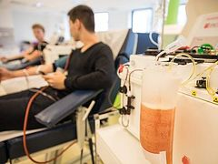 Ukrainian Church calls on healthy and recovered faithful to donate blood and plasma
