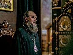 В Украинской Православной Церкви требуют привлечь к ответственности виновных в избиении верующих в селе Задубровка