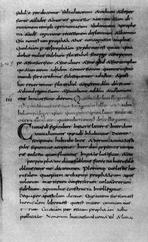 Libri Carolini. Codex Vaticanus Latinus 7207. Ватиканская апостольская библиотека