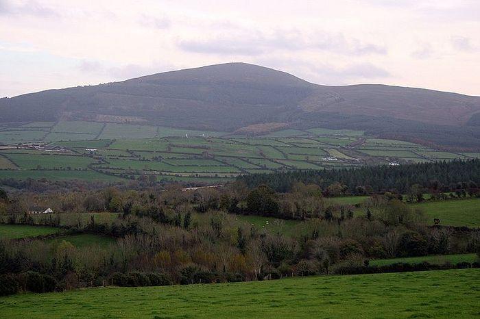 Brandon Hill, Kilkenny