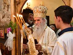 Gay unions are debasement of human nature and persecution of Christ—Metropolitan Amfilohije of Montenegro
