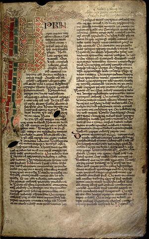 Страница из Баллимотской книги