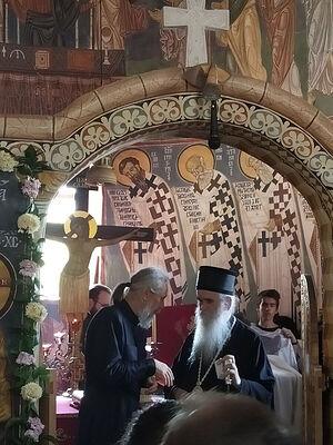 С владыкой Амфилохием, Митрополитом Черногорско-Приморским, рукоположенный им дьякон Димитрий Таланкин
