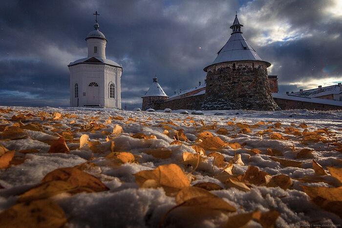 Χειμερινό φθινόπωρο © Alexandr Bobretsov