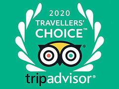 Проект «Россия-Моя история» получил престижную награду Travellers' Choice 2020
