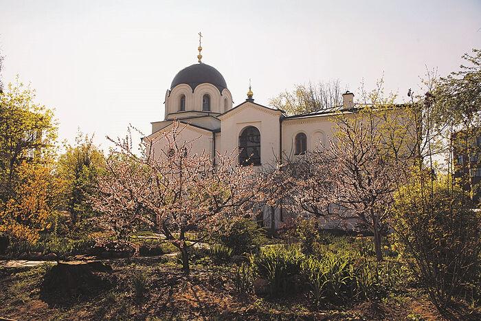 Зачатьевский монастырь. Храм Сошествия Святаго Духа. Весна