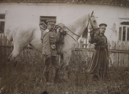 Походы и кони