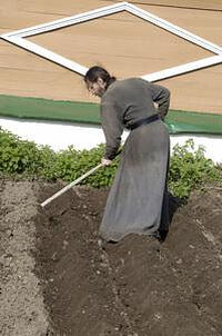 Work in the garden. Photo: Optina.ru.