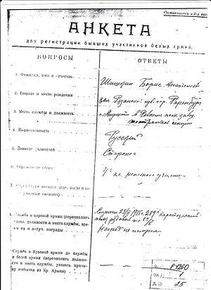Анкета Бориса Шишкина