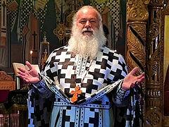 Beloved Romanian Elder Ghelasie (Țepeș) reposes in the Lord (+VIDEOS)