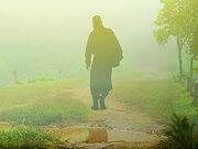В издательстве «Вольный Странник» вышла новая книга Ольги Рожневой «Монахи, священники и миряне о монашестве и священстве»
