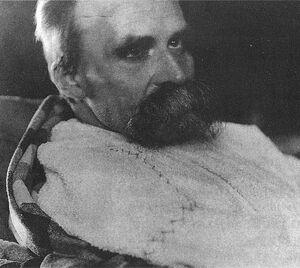 Обезумевший Фридрих Ницше незадолго до смерти