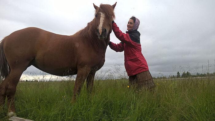 Друзья помогли Аксеновским купить в Аранце лошадь
