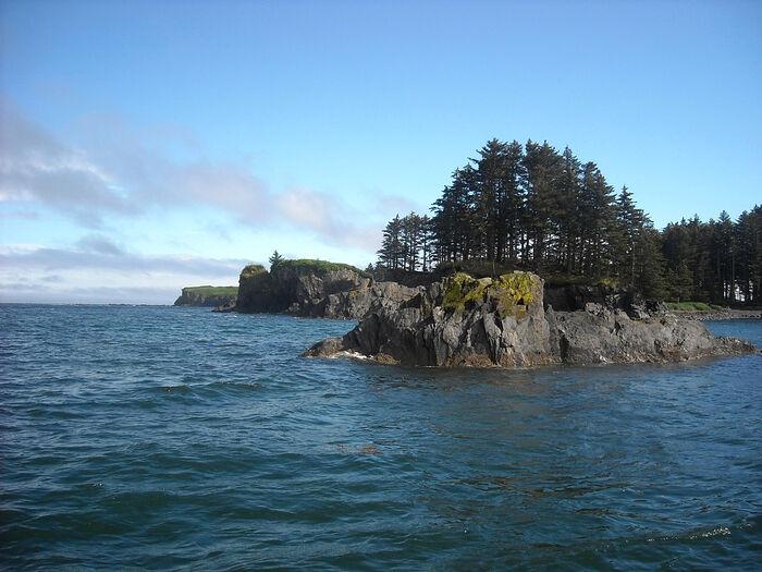 Spruce Island. Photo: ryazpressa.ru