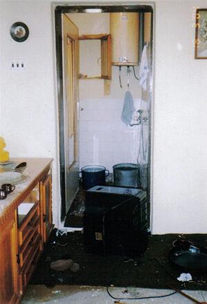 Дом Грковичей после погрома