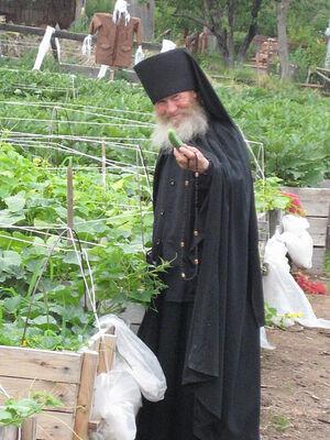 Схимонах Евфимий. На фото еще монах Елисей