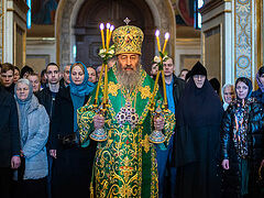Metropolitan Onuphry: In church, we find everything we need for life