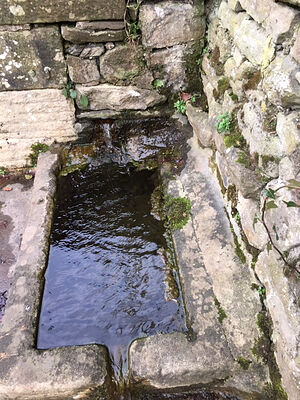 The Bank Well at Giggleswick, N. Yorkshire (kindly provided by Kathleen Kinder)
