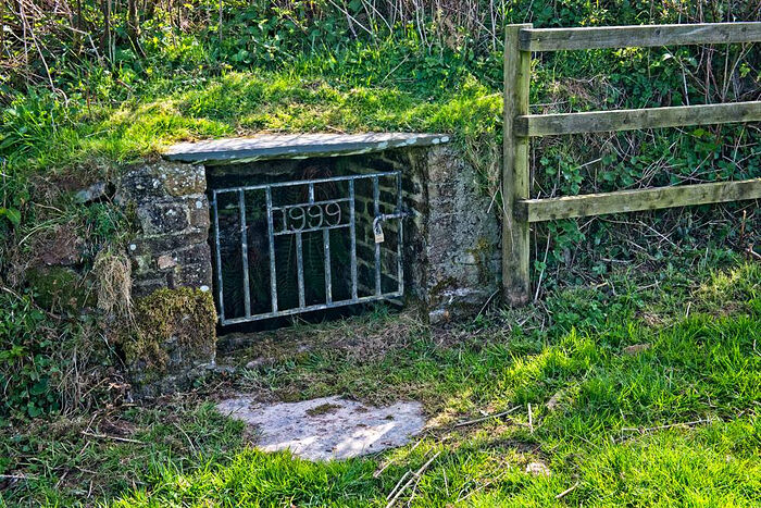 Святой источник в деревне Норт-Петервин, Корнуолл (любезно предоставлено - North Petherwin Church)