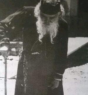 Старец Теодосий (Балшич)