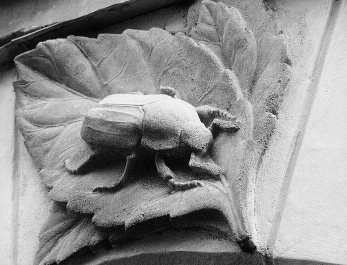 Барельеф майского жука над входной дверью школы