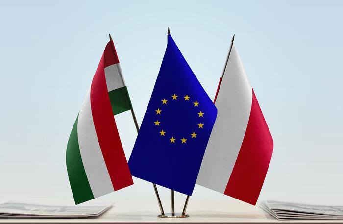Photo: pathforeurope.eu