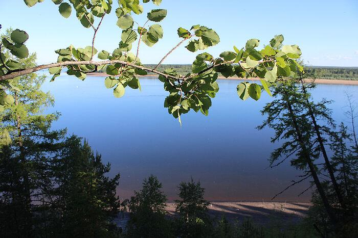 Из д. Бызовой открывается удивительный вид на р. Печору