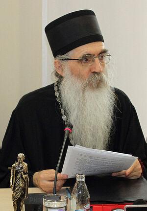 Епископ Бачский Ириней (Булович)