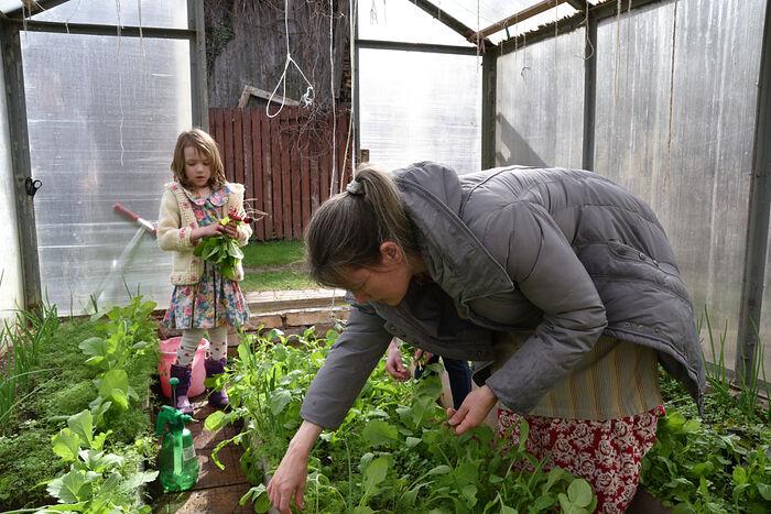 Дети помогают родителям во дворе и на огороде