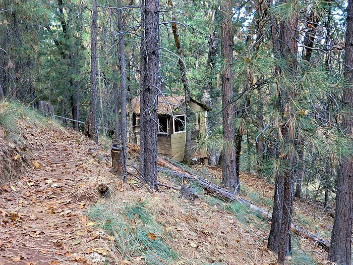 A cell in the woods at St. Herman's Monastery