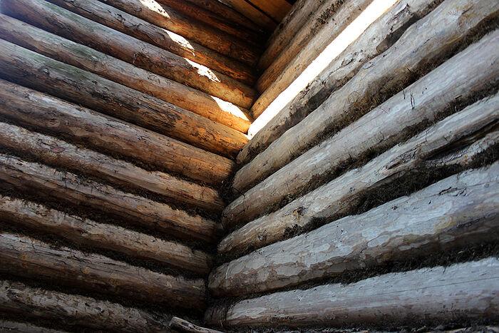 Возможно, из бревен дома Федосьи Растворовой будет построен музей истории Даниловки