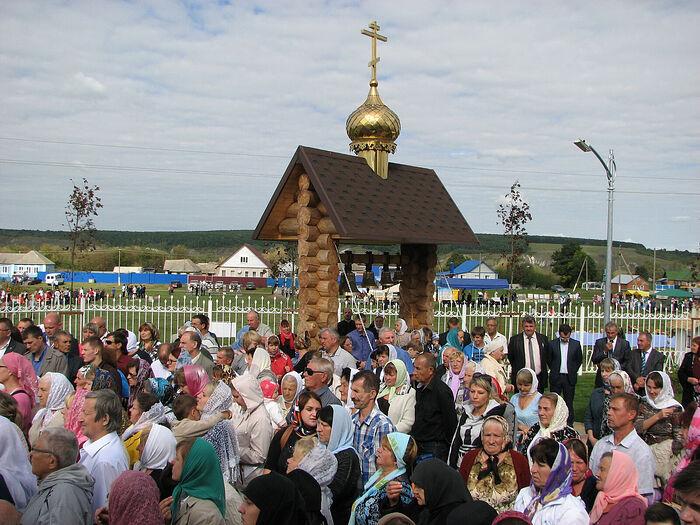 В Сурково