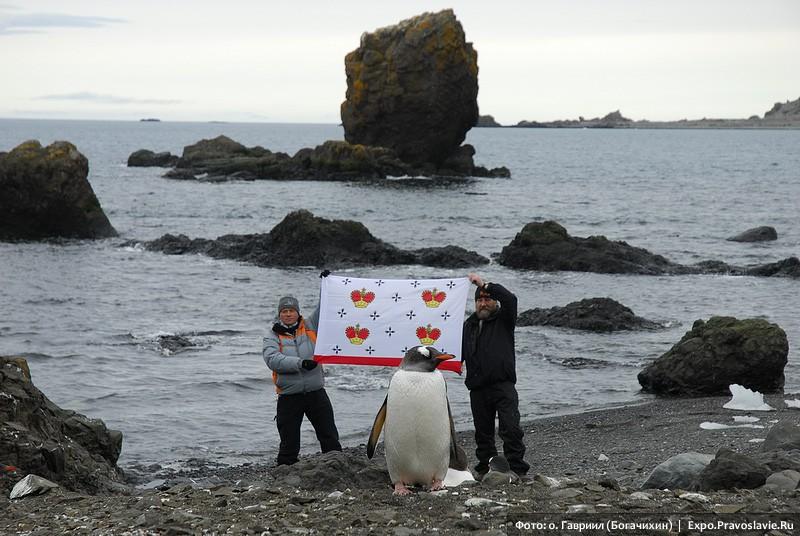 Μεγάλος πιγκουίνος
