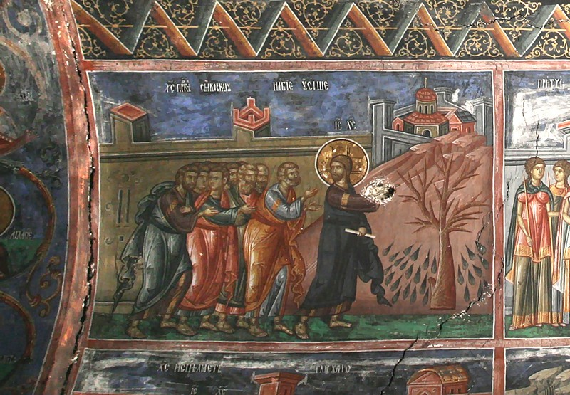 Holy and Great Monday. The cursing of the fig tree. Patriarchate of Pec. 14th c.