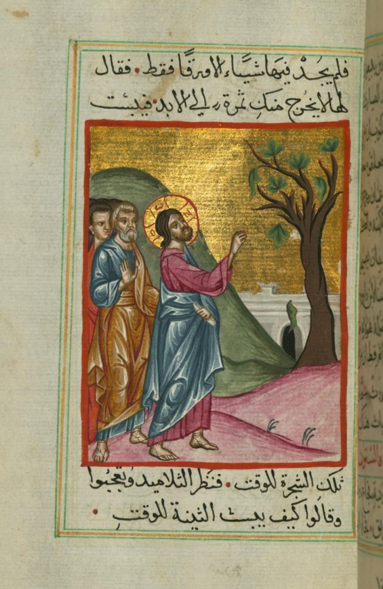 Holy and Great Monday. The cursing of the fig tree. Miniature from an Arabic Bible. 17th c.