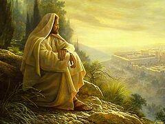 Наши планы и Господни слезы